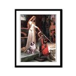 Accolade-AussieShep1 Framed Panel Print