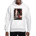 Accolade-AussieShep1 Hooded Sweatshirt