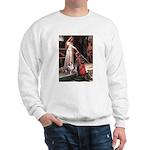 Accolade-AussieShep1 Sweatshirt