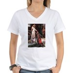 Accolade-AussieShep1 Women's V-Neck T-Shirt