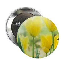 "Spring Tulips 2.25"" Button"