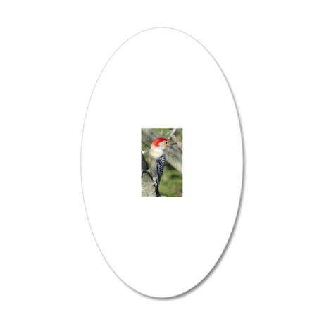 Red-bellied Woodpecker 20x12 Oval Wall Decal