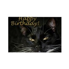 Stern Birthday Kitty Rectangle Magnet
