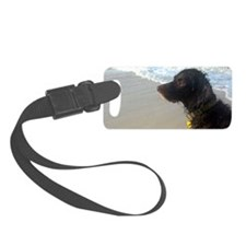 Scully Beach Profile Luggage Tag