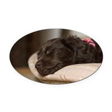 Pippi Sleeping Oval Car Magnet