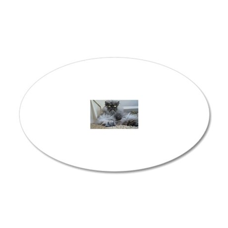 Colonel Meow surprise 20x12 Oval Wall Decal