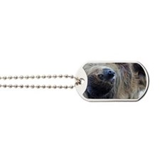 Sloth Beer Cooler Dog Tags