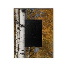 Autumn Aspens Picture Frame