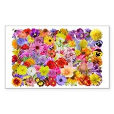 Eileens Multifloral long Decal