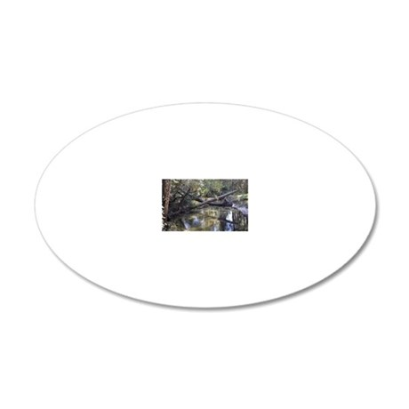 blackwater 20x12 Oval Wall Decal
