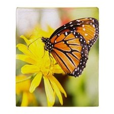 butterfly sc Throw Blanket