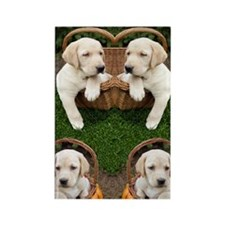 Cute Lab Puppy Rectangle Magnet