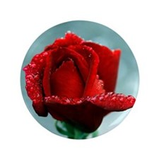 "Red rose and raindrops 3.5"" Button"