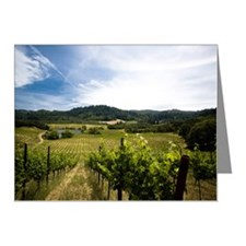 Vineyard in Sonoma Valley, C Note Cards (Pk of 10)