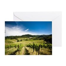 Vineyard in Sonoma Valley, Californi Greeting Card