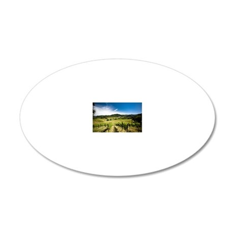 Vineyard in Sonoma Valley, C 20x12 Oval Wall Decal