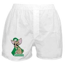 Chihuahuas for Cerebral Palsy Boxer Shorts