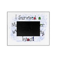 i survived nursing career PILLOW Picture Frame
