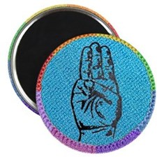 Rainbow Boy Scouts Magnet