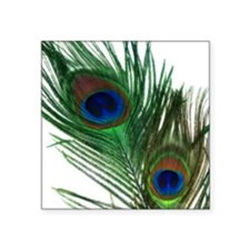 "Romantic Peacock Feather Square Sticker 3"" x 3"""