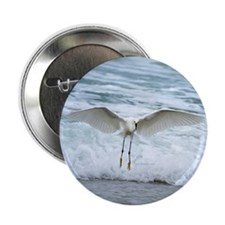"Born of sea-foam 2.25"" Button"