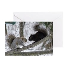 Black and Gray Squirrel Greeting Card