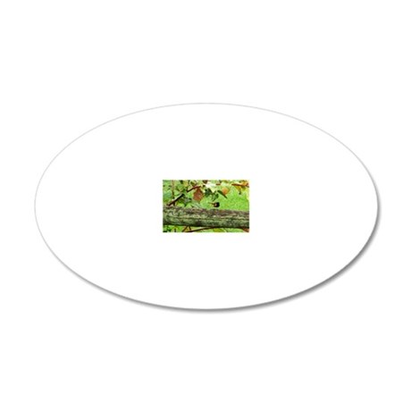 EcoBirder 20x12 Oval Wall Decal