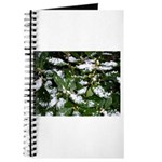 Snow Plant Journal