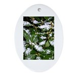 Snow Plant Oval Ornament