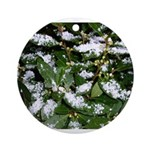Snow Plant Ornament (Round)