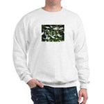 Snow Plant Sweatshirt