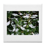 Snow Plant Tile Coaster