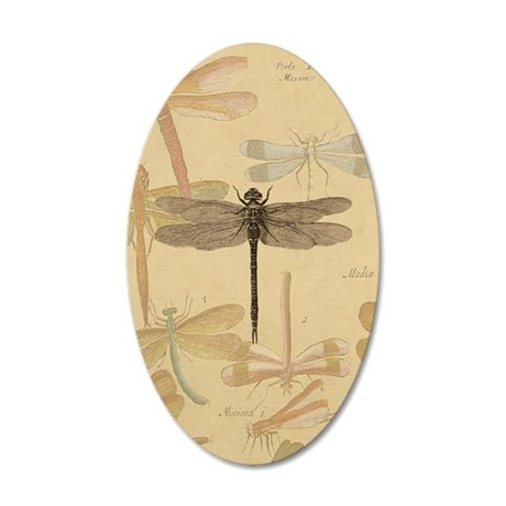 Dragonfly Vintage 35x21 Oval Wall Decal