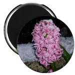 Snow Hyacinth Magnet