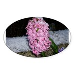Snow Hyacinth Oval Sticker