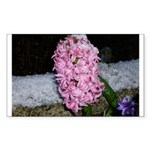 Snow Hyacinth Rectangle Sticker