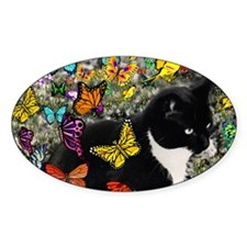Freckles the Tuxedo Kitty in Butter Decal