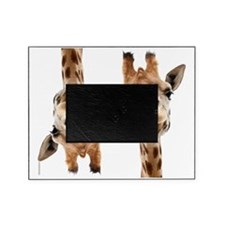 Hangover Movie Part 3 Giraffe Picture Frame