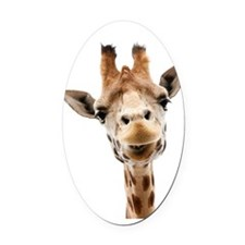 Hangover Movie Part 3 Giraffe Oval Car Magnet
