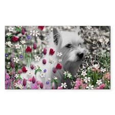 Violet the White Westie in Flo Decal