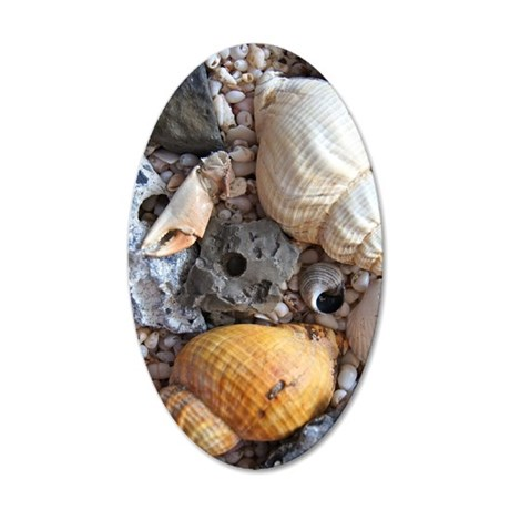 Sea Shells FF 35x21 Oval Wall Decal