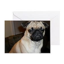 Stink eye pug Greeting Card