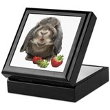 Bunny and strawberries Keepsake Box
