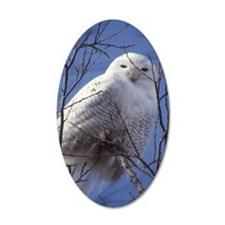Snowy White Owl, Blue Sky Wall Decal