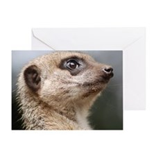 Meerkat 5x7 Rug Greeting Card