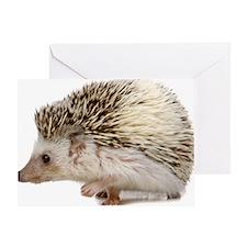 Rosie Hedgehog Greeting Card