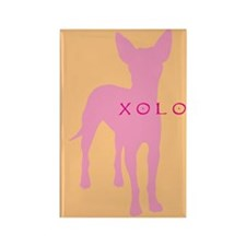 xoloitzcuintli Rectangle Magnet