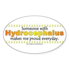 Hydrocephalus Pride Oval Decal