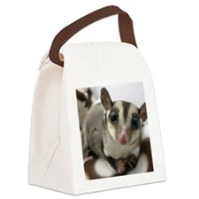 Sugar Glider Love Canvas Lunch Bag