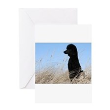 Sitting Poodle Greeting Cards